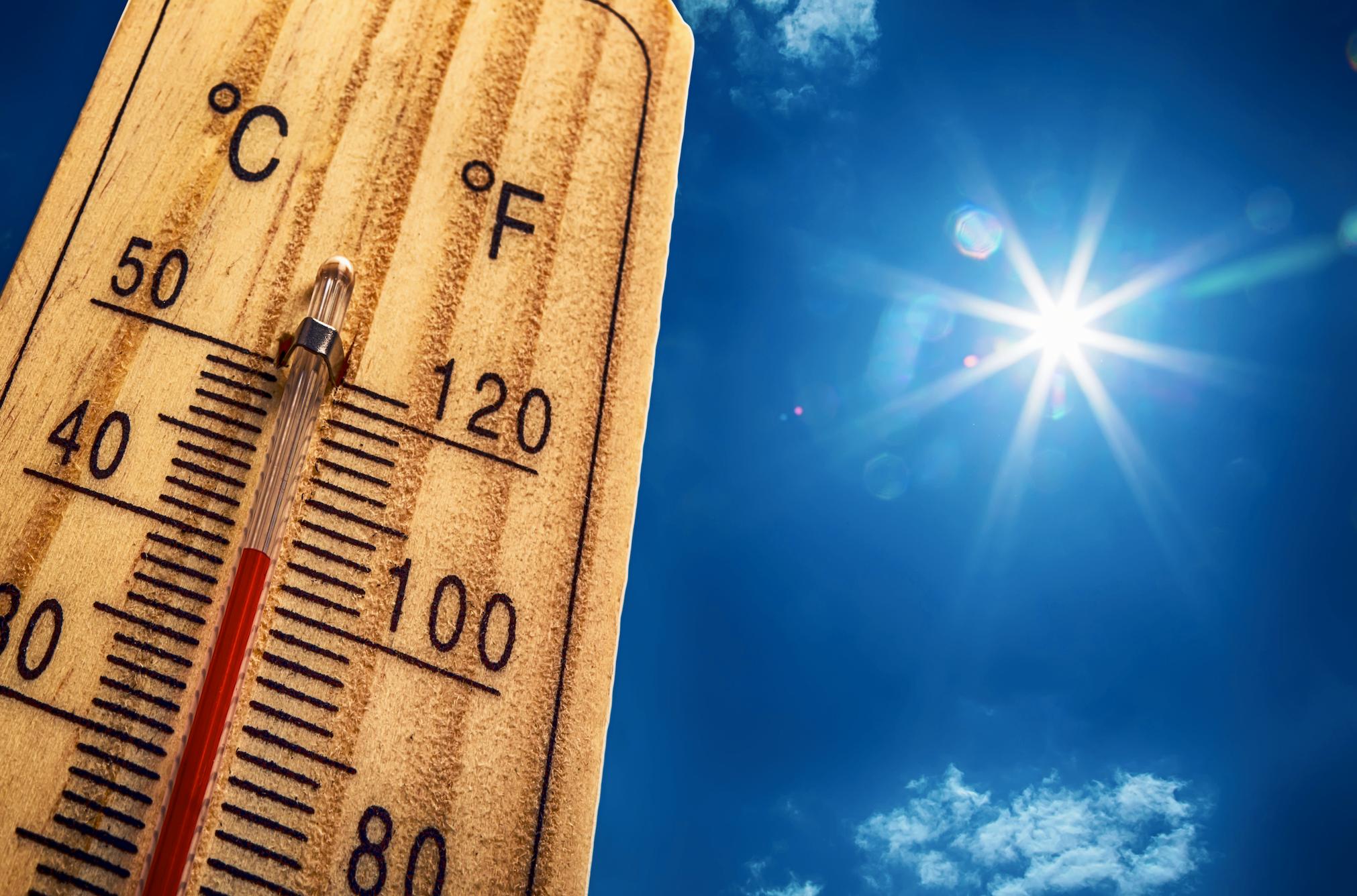 canicule-chaleur-precaution