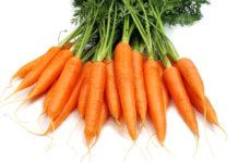 legume du mois carotte